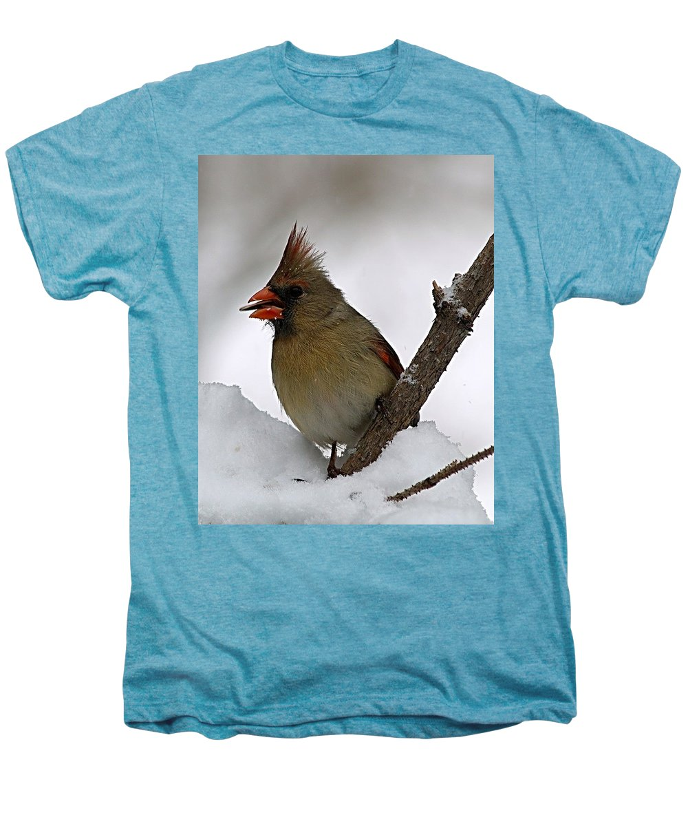 Bird Men's Premium T-Shirt featuring the photograph I Love Seeds by Gaby Swanson