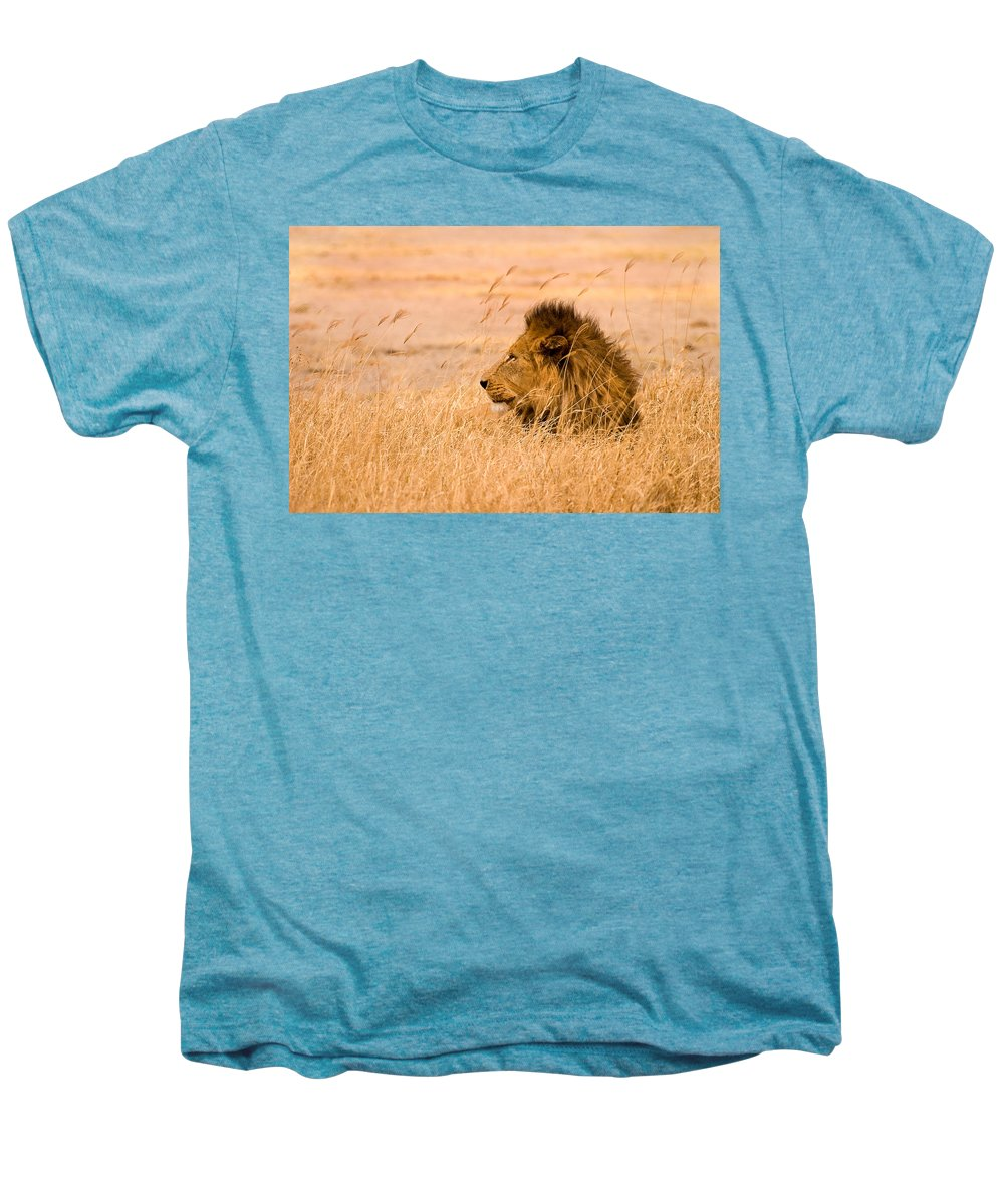 3scape Men's Premium T-Shirt featuring the photograph King Of The Pride by Adam Romanowicz