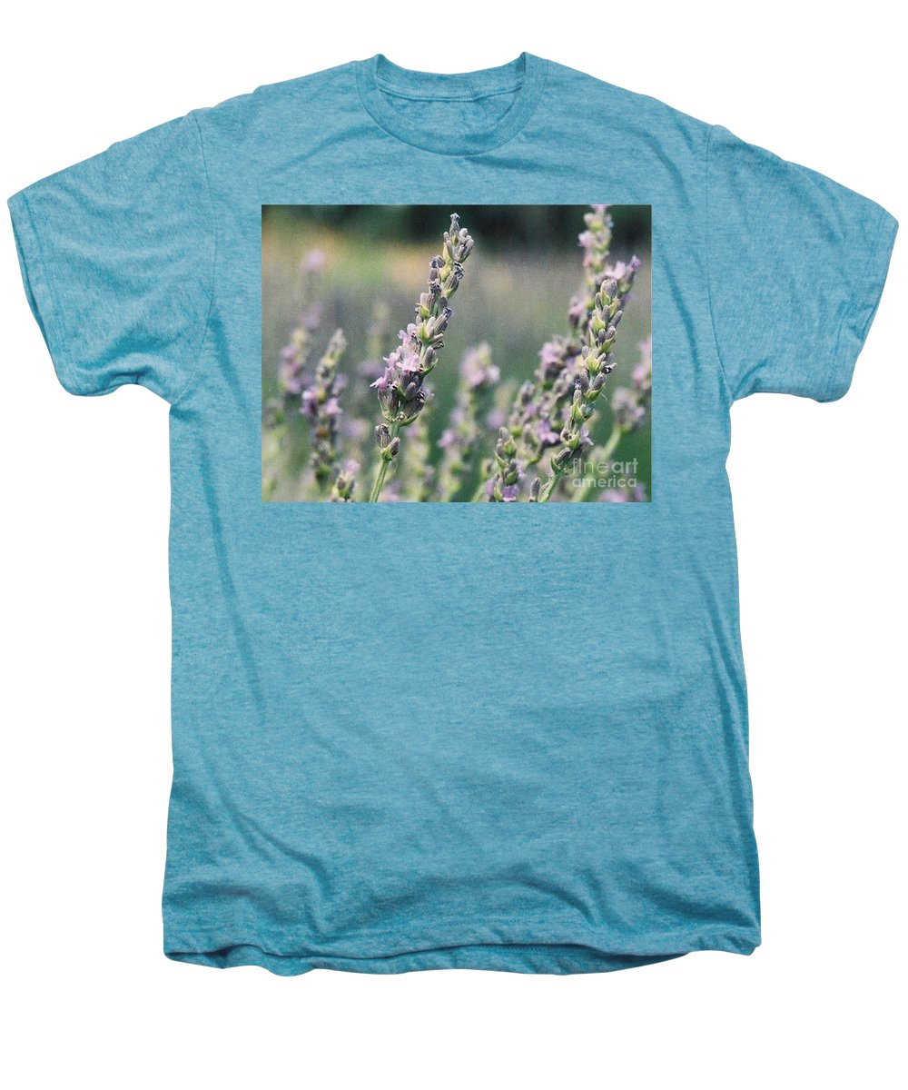 Flowers Men's Premium T-Shirt featuring the painting Lavender by Eric Schiabor