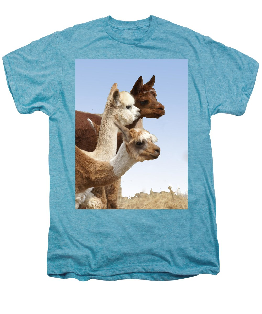 Llama Men's Premium T-Shirt featuring the photograph Llama's Three by Heather Coen