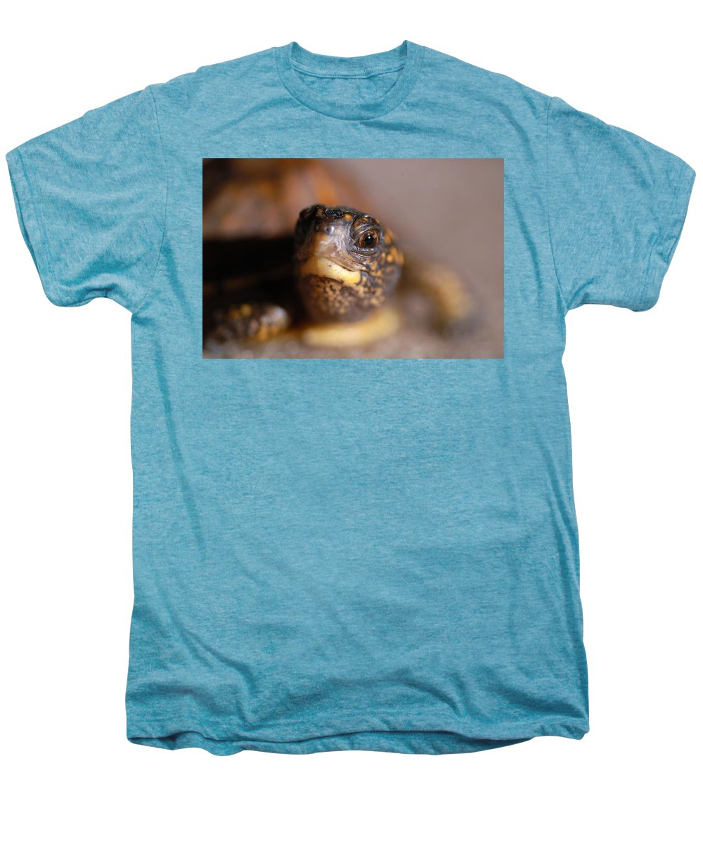 Clay Men's Premium T-Shirt featuring the photograph Lucky by Clayton Bruster