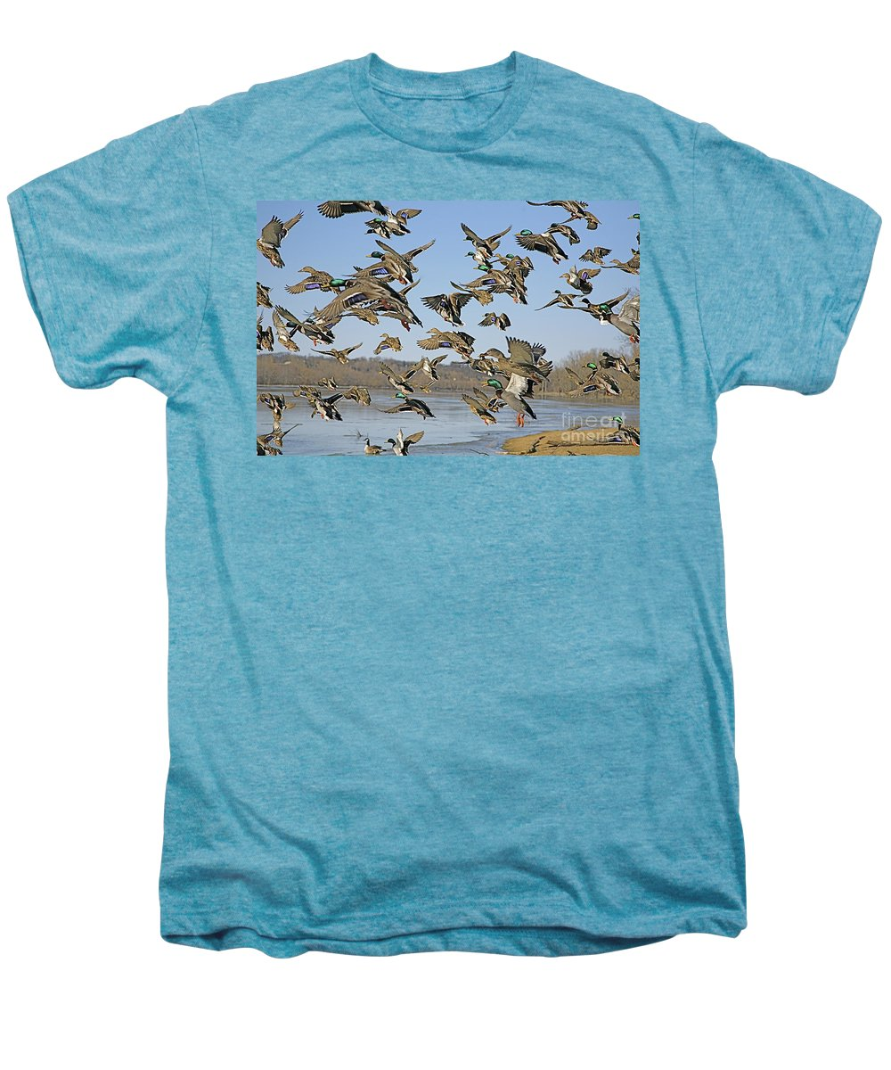 Nature Feather Men's Premium T-Shirt featuring the photograph Mad Rush by Robert Pearson