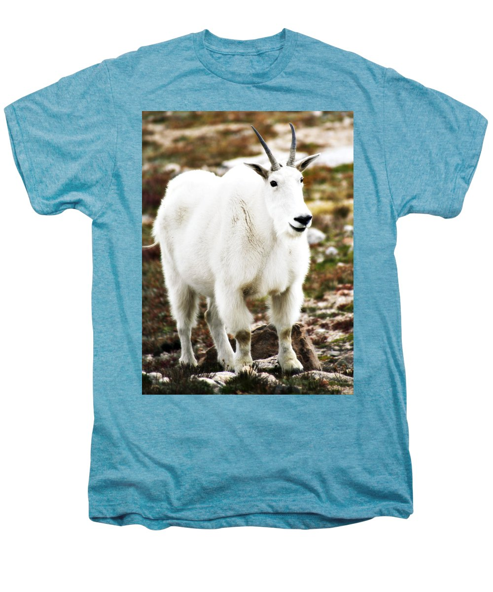Animal Men's Premium T-Shirt featuring the photograph Mountain Goat by Marilyn Hunt