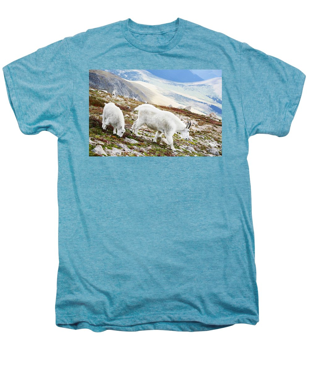 Mountain Men's Premium T-Shirt featuring the photograph Mountain Goats 1 by Marilyn Hunt