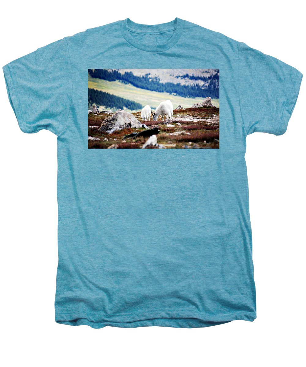 Animal Men's Premium T-Shirt featuring the photograph Mountain Goats 2 by Marilyn Hunt