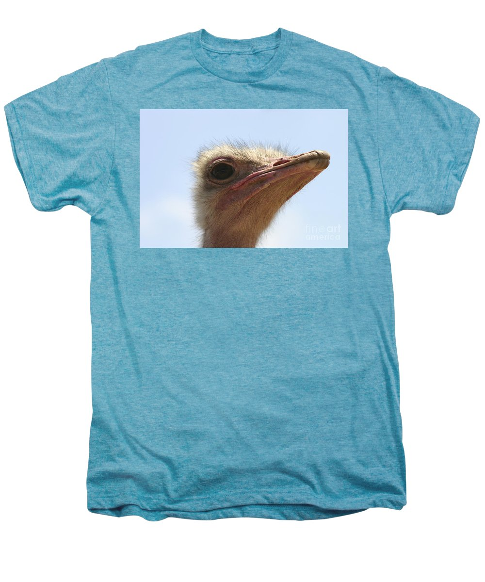 Ostrich Men's Premium T-Shirt featuring the photograph Ostrich Head Close Up by Danny Yanai