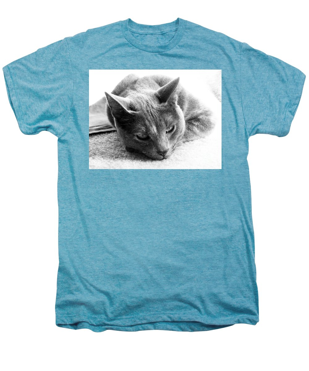 Cats Men's Premium T-Shirt featuring the photograph Resting by Amanda Barcon
