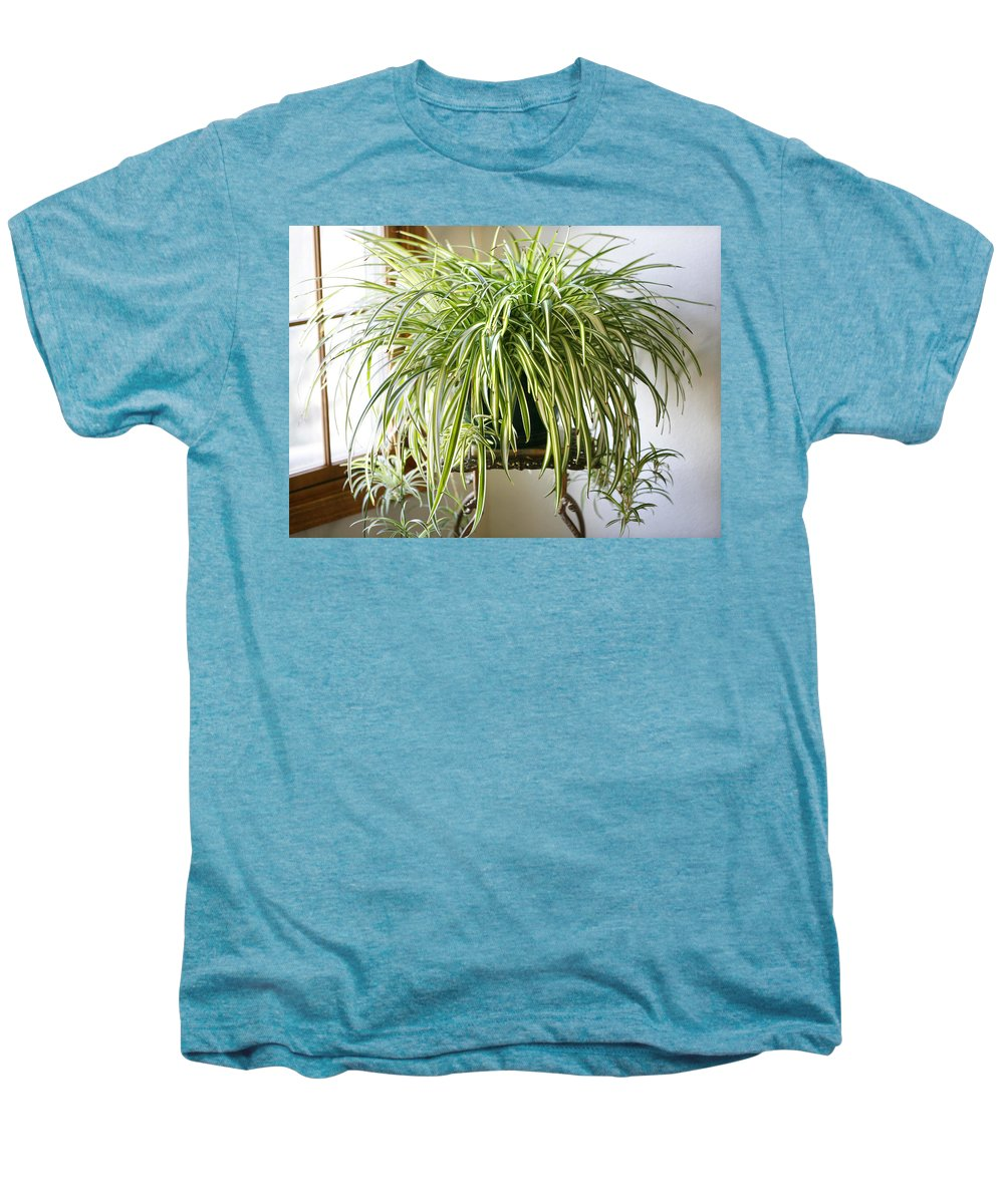 Spider Plant Men's Premium T-Shirt featuring the photograph Spider Plant by Marilyn Hunt