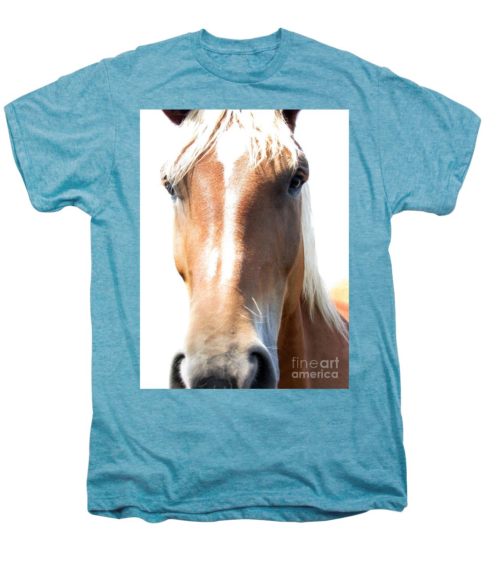 Horse Men's Premium T-Shirt featuring the photograph Sweetie by Amanda Barcon