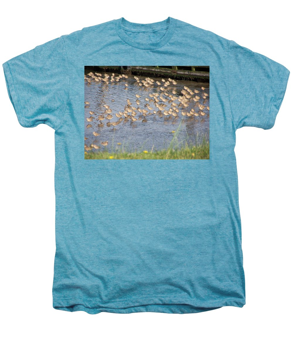 Seabirds Men's Premium T-Shirt featuring the photograph The Plovers by Laurie Kidd