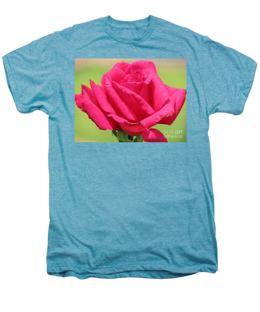 Roses Men's Premium T-Shirt featuring the photograph The Rose by Amanda Barcon