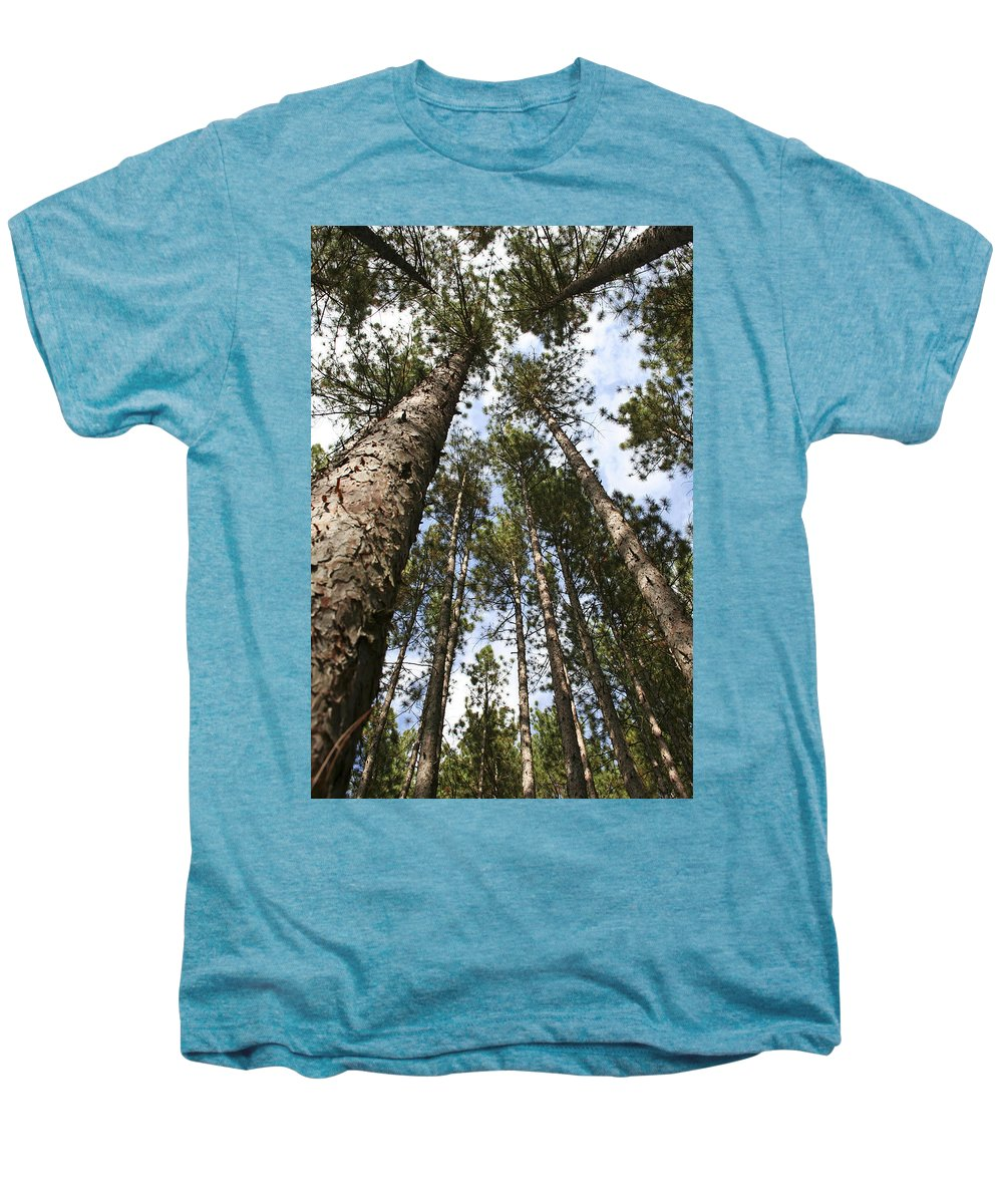 Autumn Men's Premium T-Shirt featuring the photograph Tree Stand by Margie Wildblood