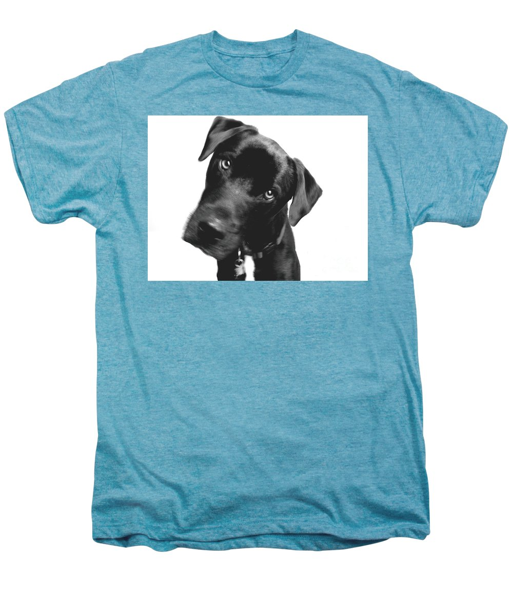 Labrador Men's Premium T-Shirt featuring the photograph What by Amanda Barcon