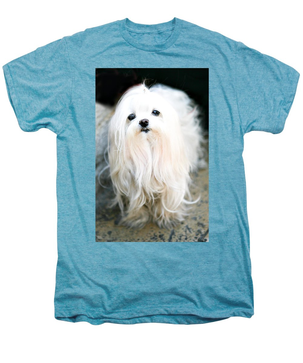 Small Men's Premium T-Shirt featuring the photograph White Fluff by Marilyn Hunt