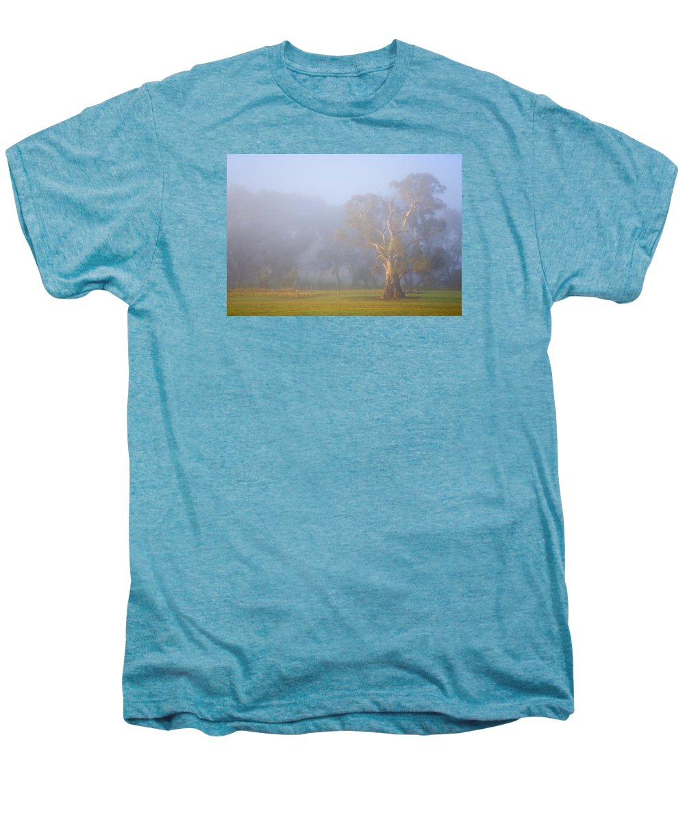 Tree Men's Premium T-Shirt featuring the photograph White Gum Morning by Mike Dawson