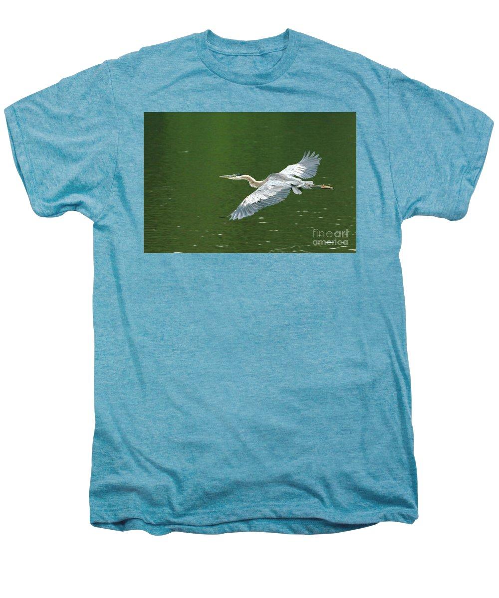 Landscape Nature Wildlife Bird Crane Heron Green Flight Ohio Water Men's Premium T-Shirt featuring the photograph Young Great Blue Heron Taking Flight by Dawn Downour