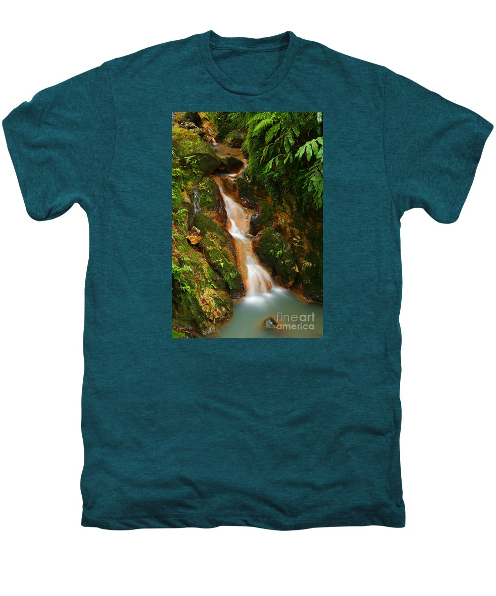 Azores Men's Premium T-Shirt featuring the photograph Caldeira Velha Park by Gaspar Avila