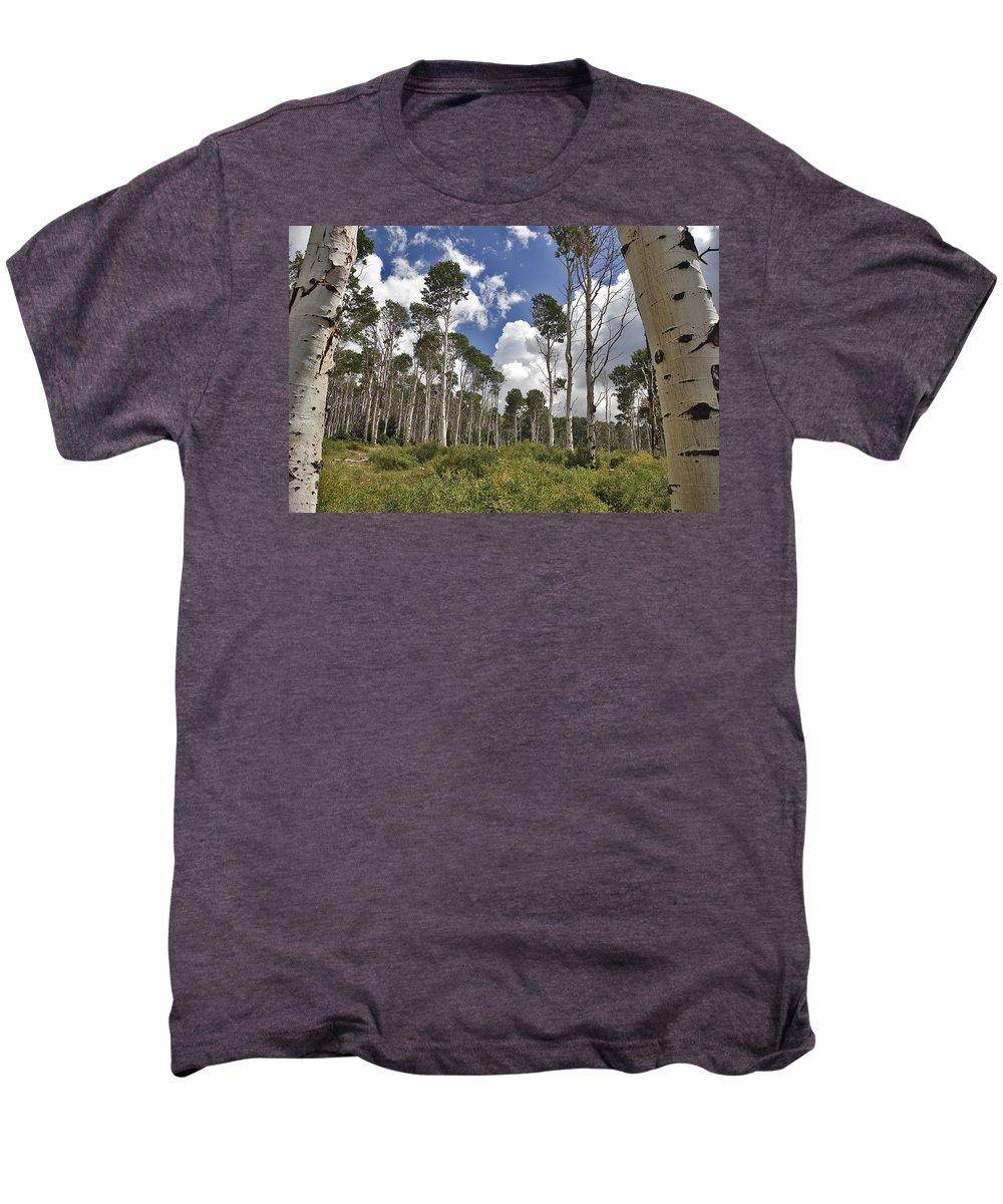 3scape Photos Men's Premium T-Shirt featuring the photograph Aspen Grove by Adam Romanowicz
