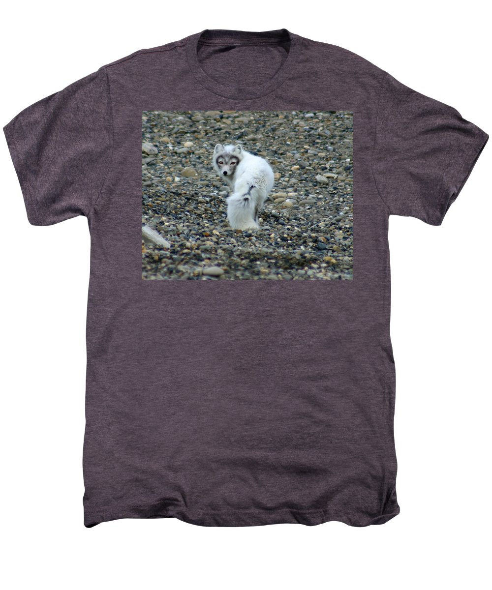 Alaska Men's Premium T-Shirt featuring the photograph Arctic Fox by Anthony Jones