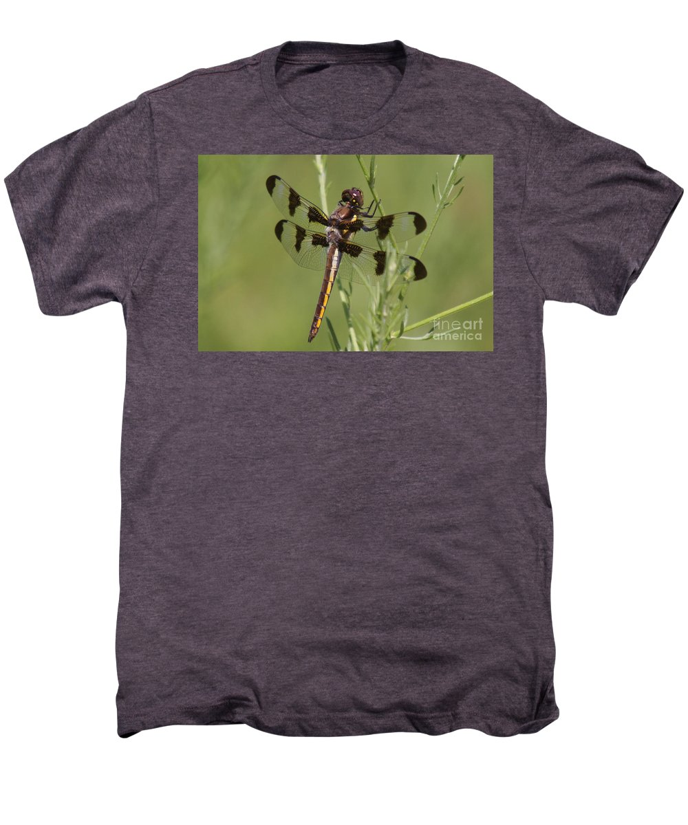Insect Men's Premium T-Shirt featuring the photograph Dragon Fly by Robert Pearson
