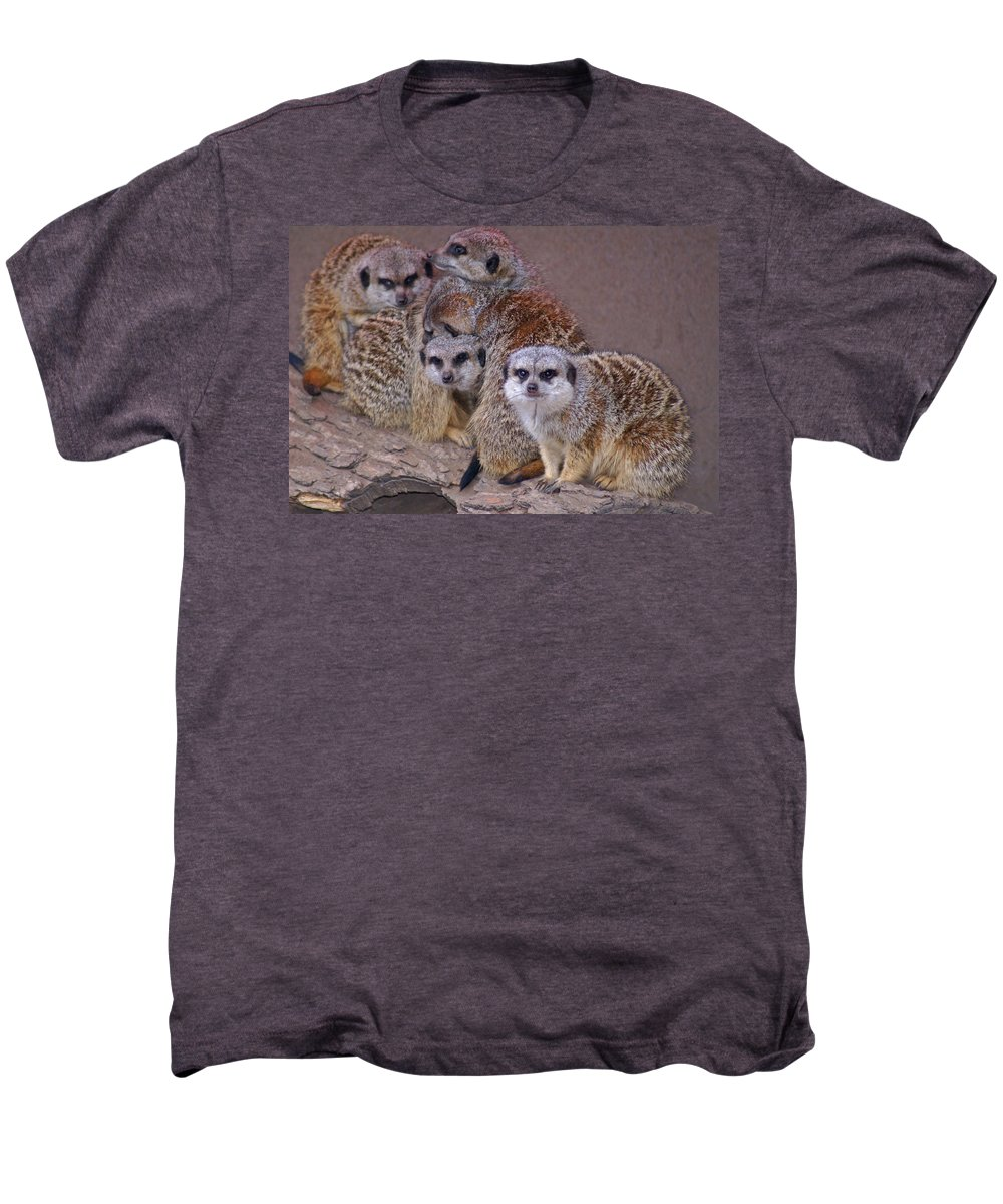 Mer Cats Men's Premium T-Shirt featuring the photograph Freezing Meer Cats by Heather Coen