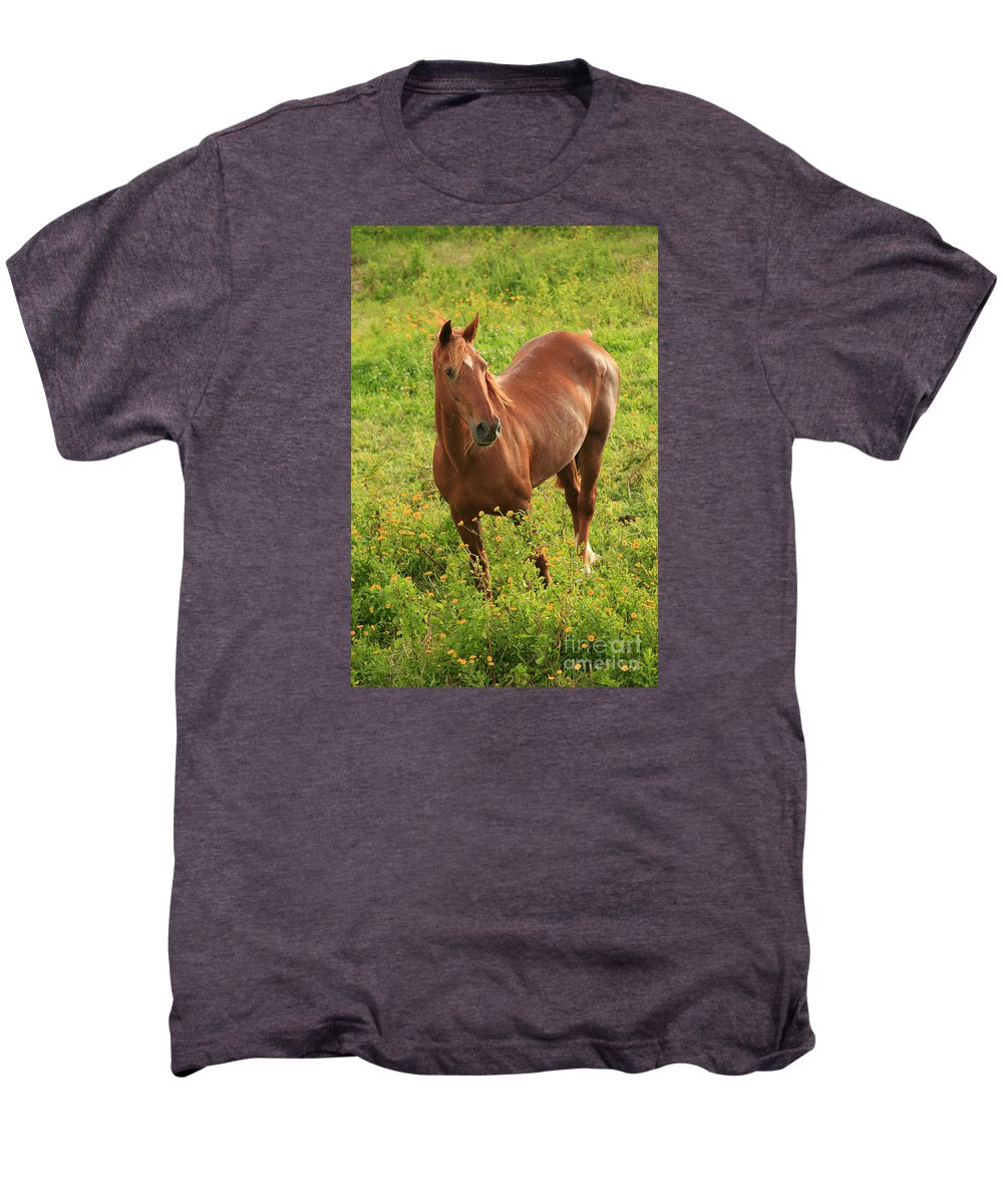 Animals Men's Premium T-Shirt featuring the photograph Horse In A Field With Flowers by Gaspar Avila