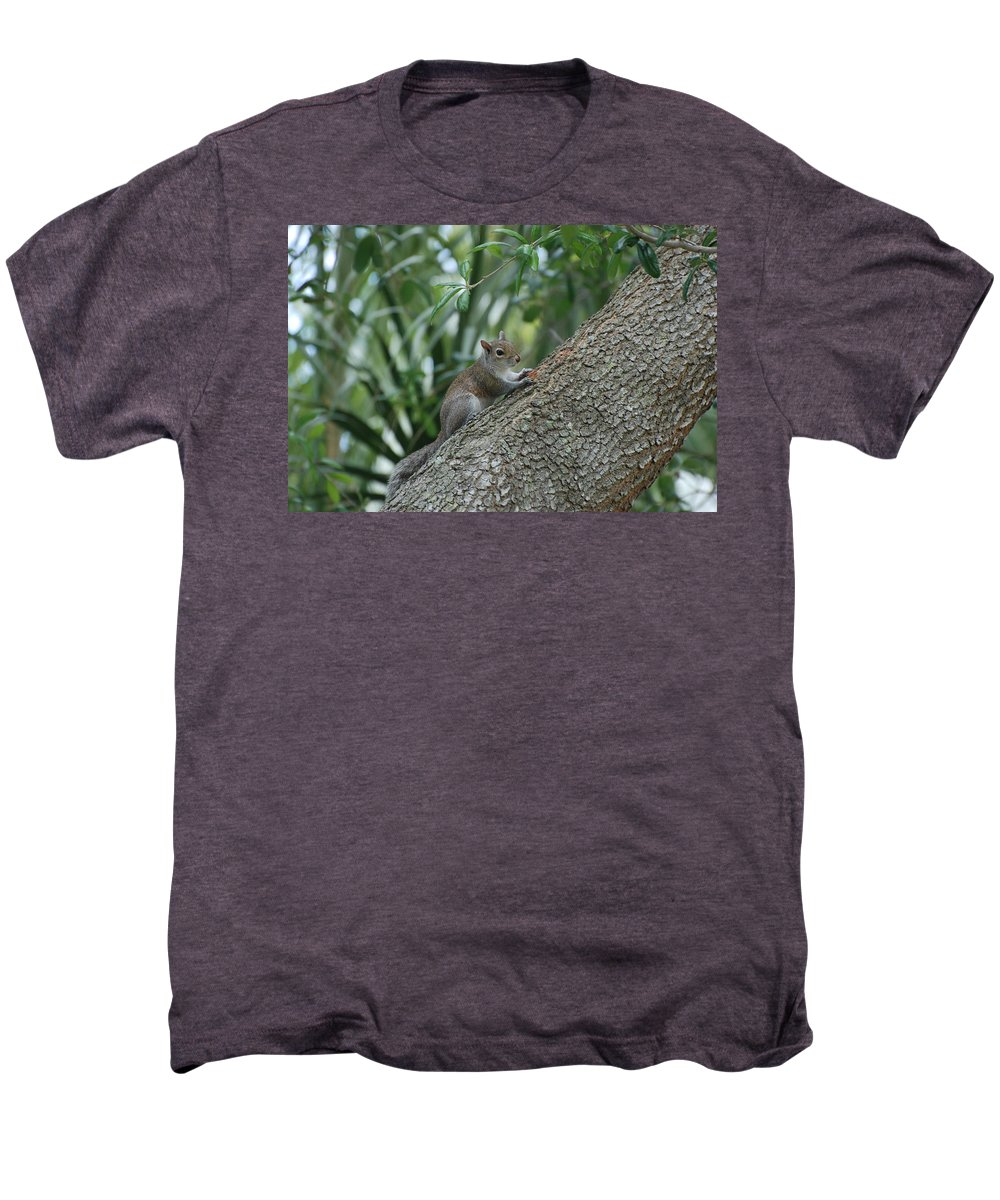 Squirrels Men's Premium T-Shirt featuring the photograph Just Chilling Out by Rob Hans