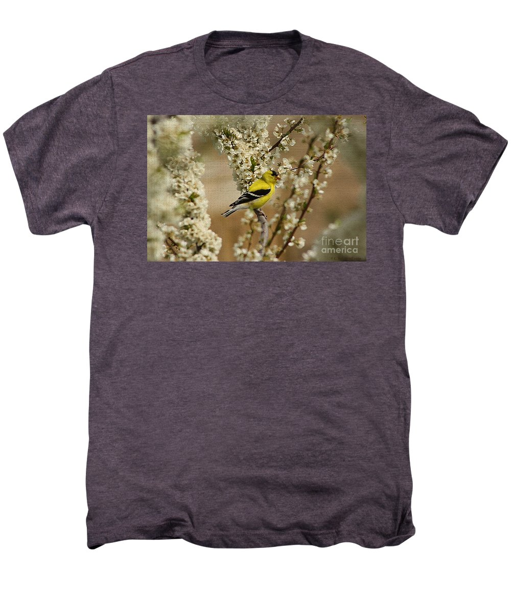 Finch Men's Premium T-Shirt featuring the photograph Male Finch In Blossoms by Cathy Beharriell
