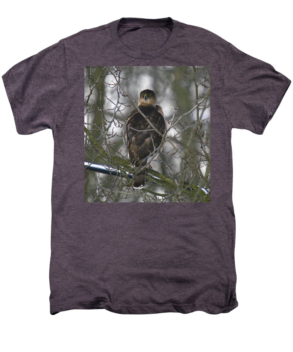 Bird Men's Premium T-Shirt featuring the photograph The Hawks Have Eyes by Robert Pearson