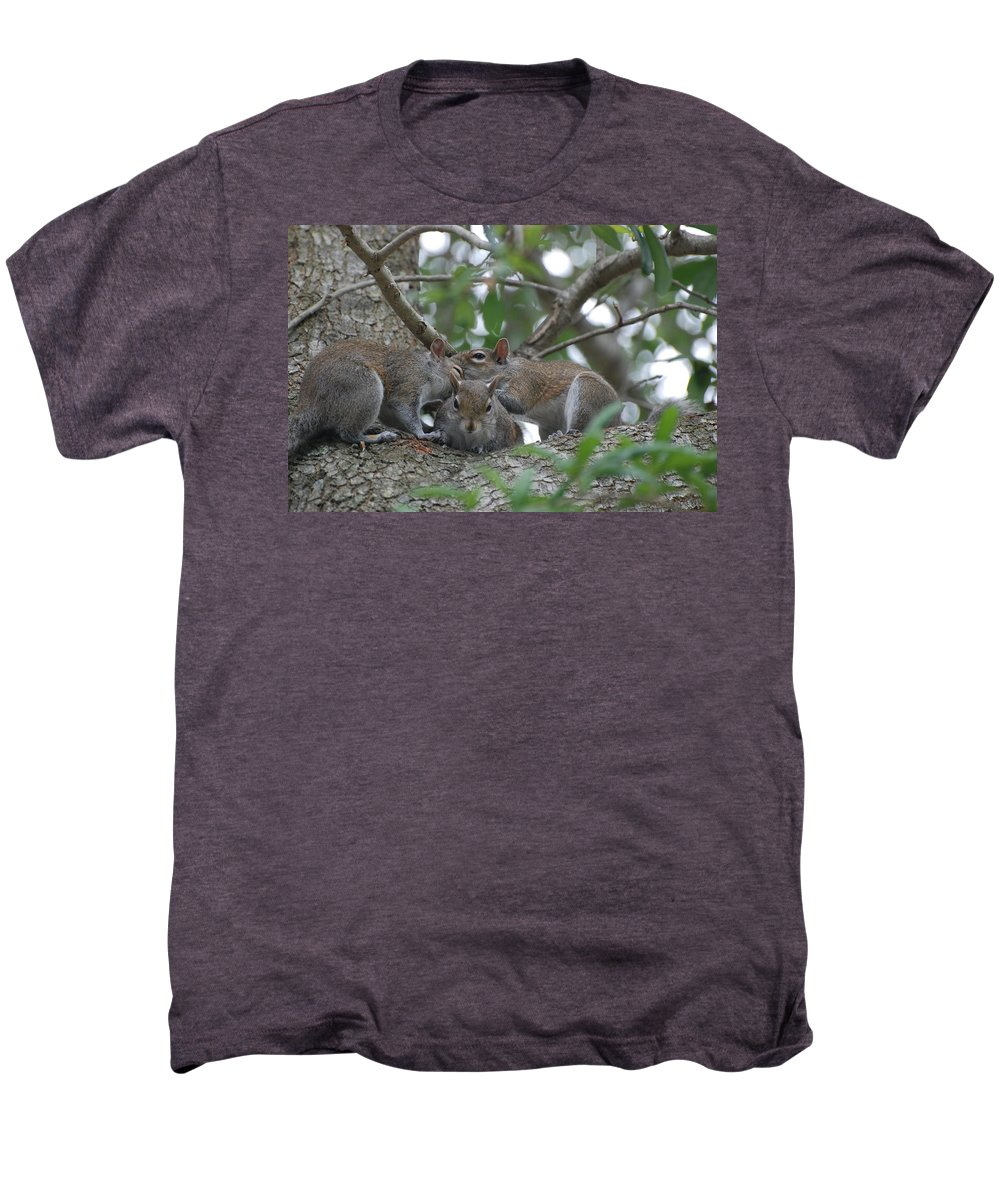 Squirrel Men's Premium T-Shirt featuring the photograph Why Me by Rob Hans