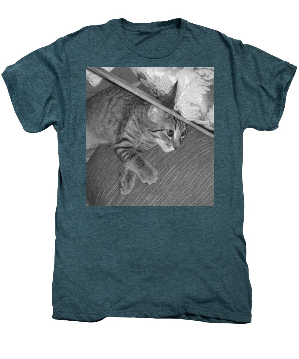 Kitten Men's Premium T-Shirt featuring the photograph Model Kitten by Pharris Art