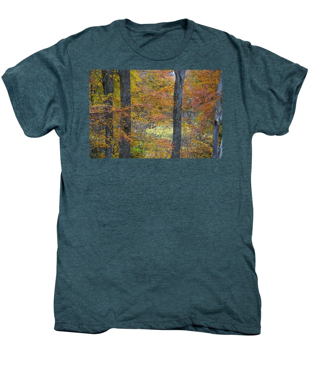 Fall Men's Premium T-Shirt featuring the photograph Autumn Colours by Phil Crean