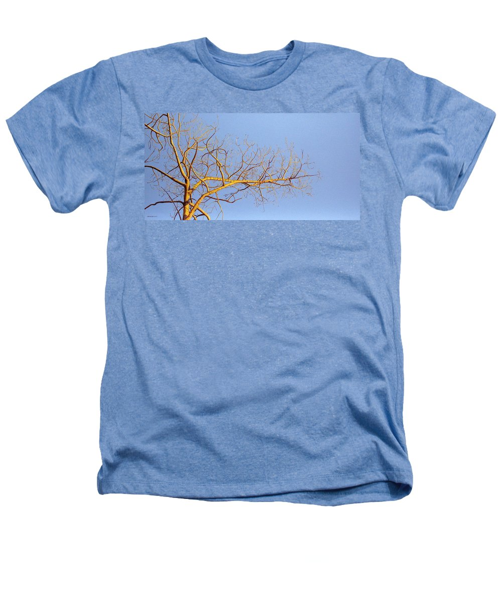 Aspen Painting Heathers T-Shirt featuring the painting Aspen In The Autumn Sun by Elaine Booth-Kallweit