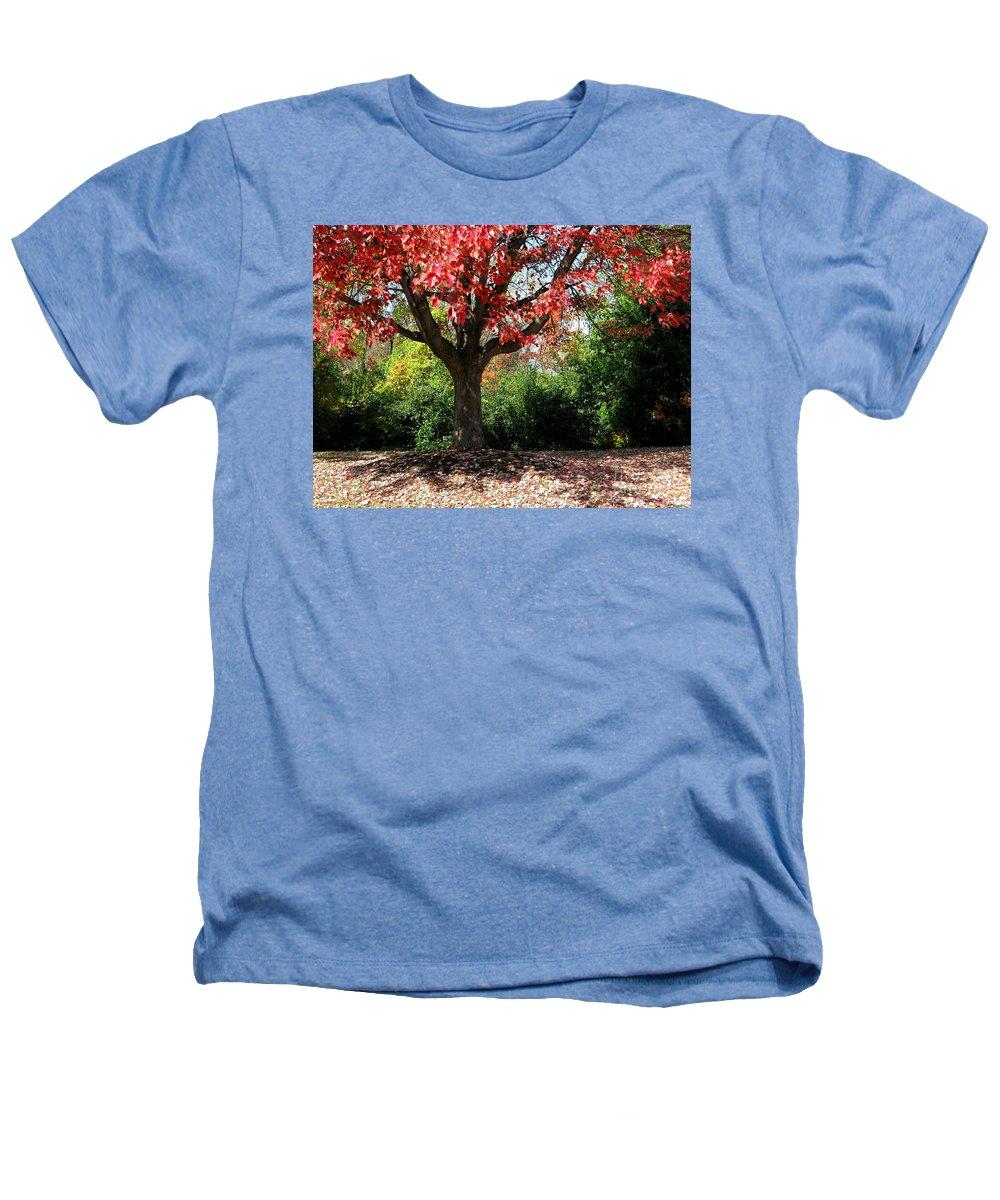 Autumn Heathers T-Shirt featuring the photograph Autumn Ablaze by Ann Horn