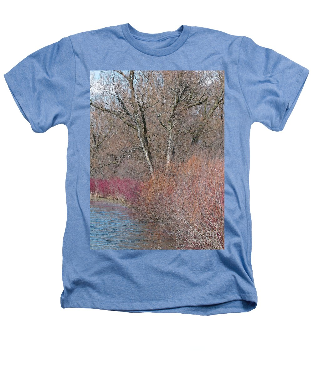 Spring Heathers T-Shirt featuring the photograph Hint Of Spring by Ann Horn