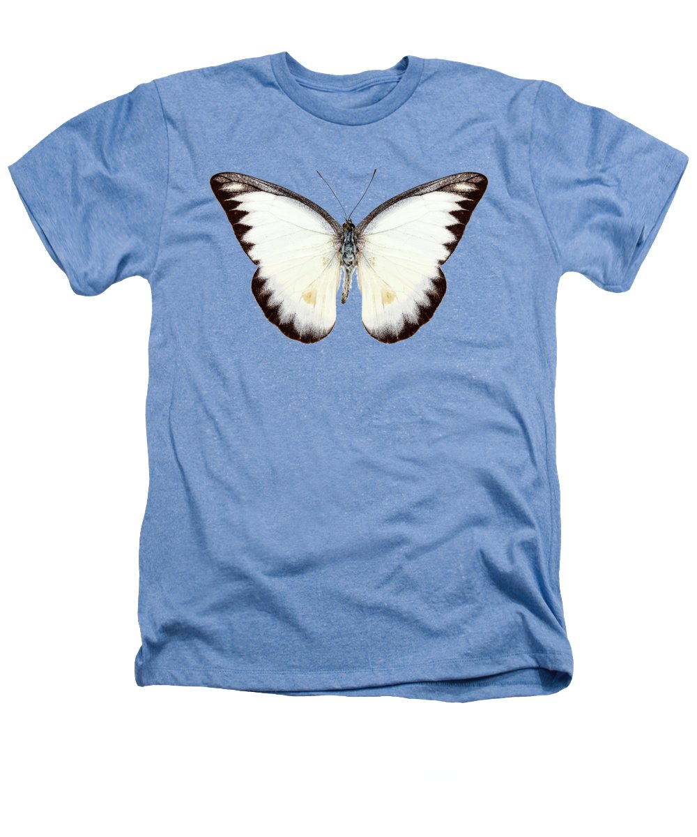 Albatross Heathers T-Shirts