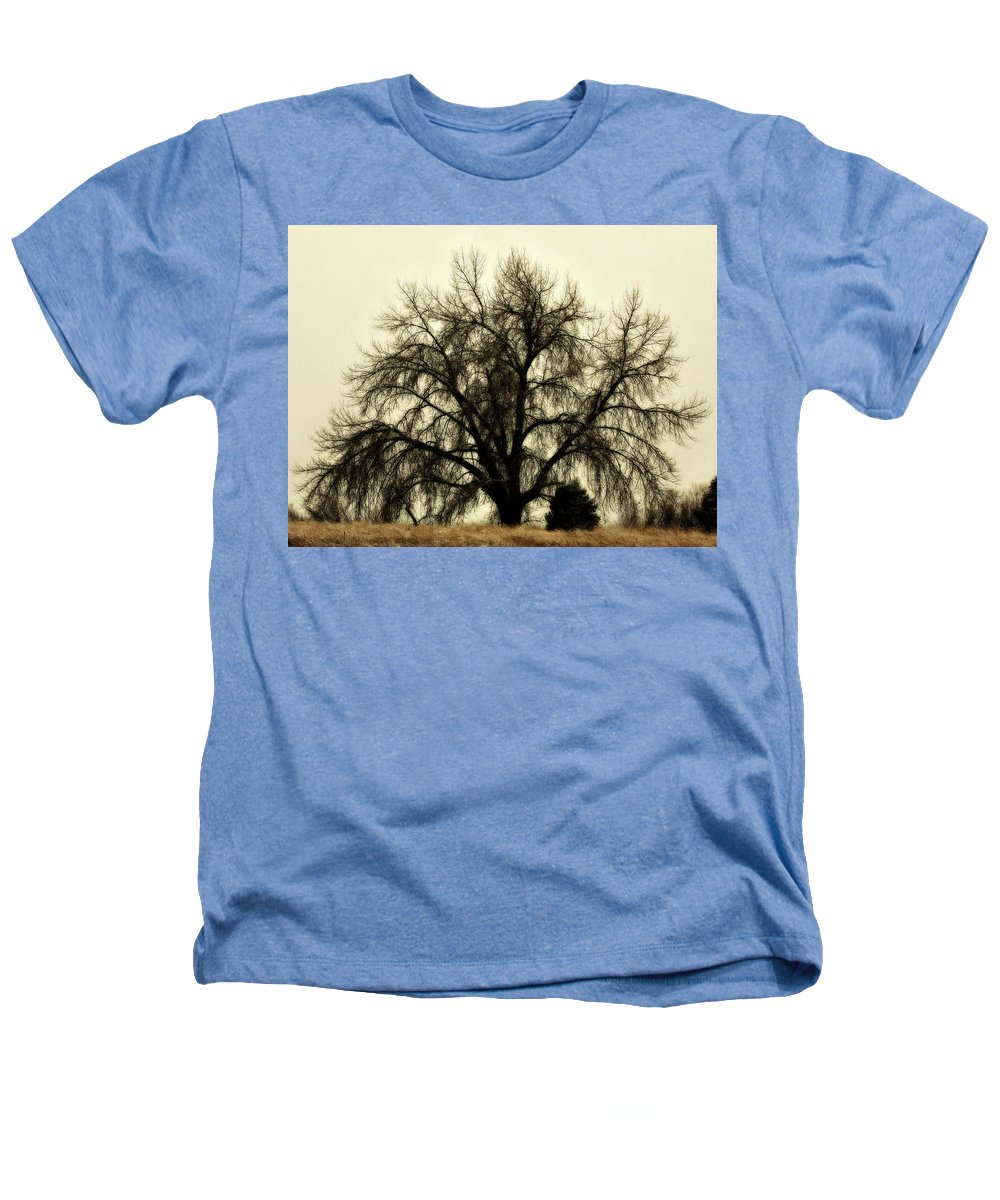 Tree Heathers T-Shirt featuring the photograph A Winter's Day by Marilyn Hunt