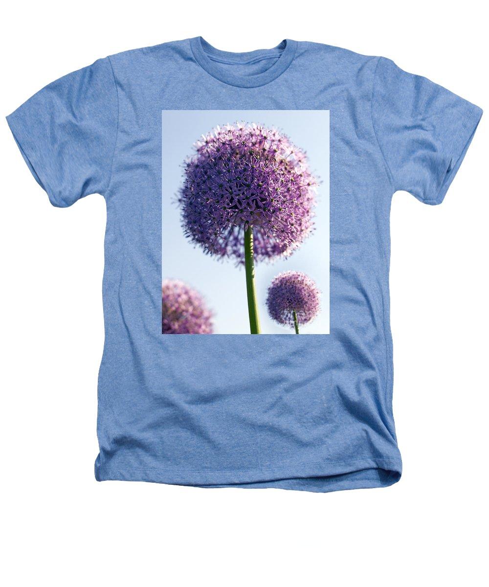 Allium Heathers T-Shirt featuring the photograph Allium Flower by Tony Cordoza