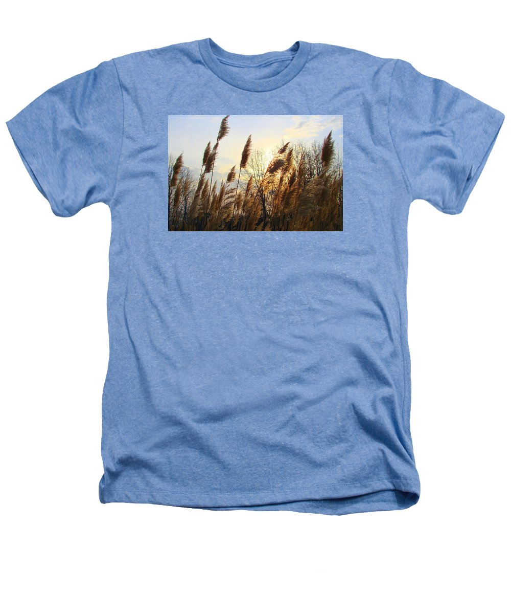 Pampasgrass Heathers T-Shirt featuring the photograph Amber Waves Of Pampas Grass by J R Seymour