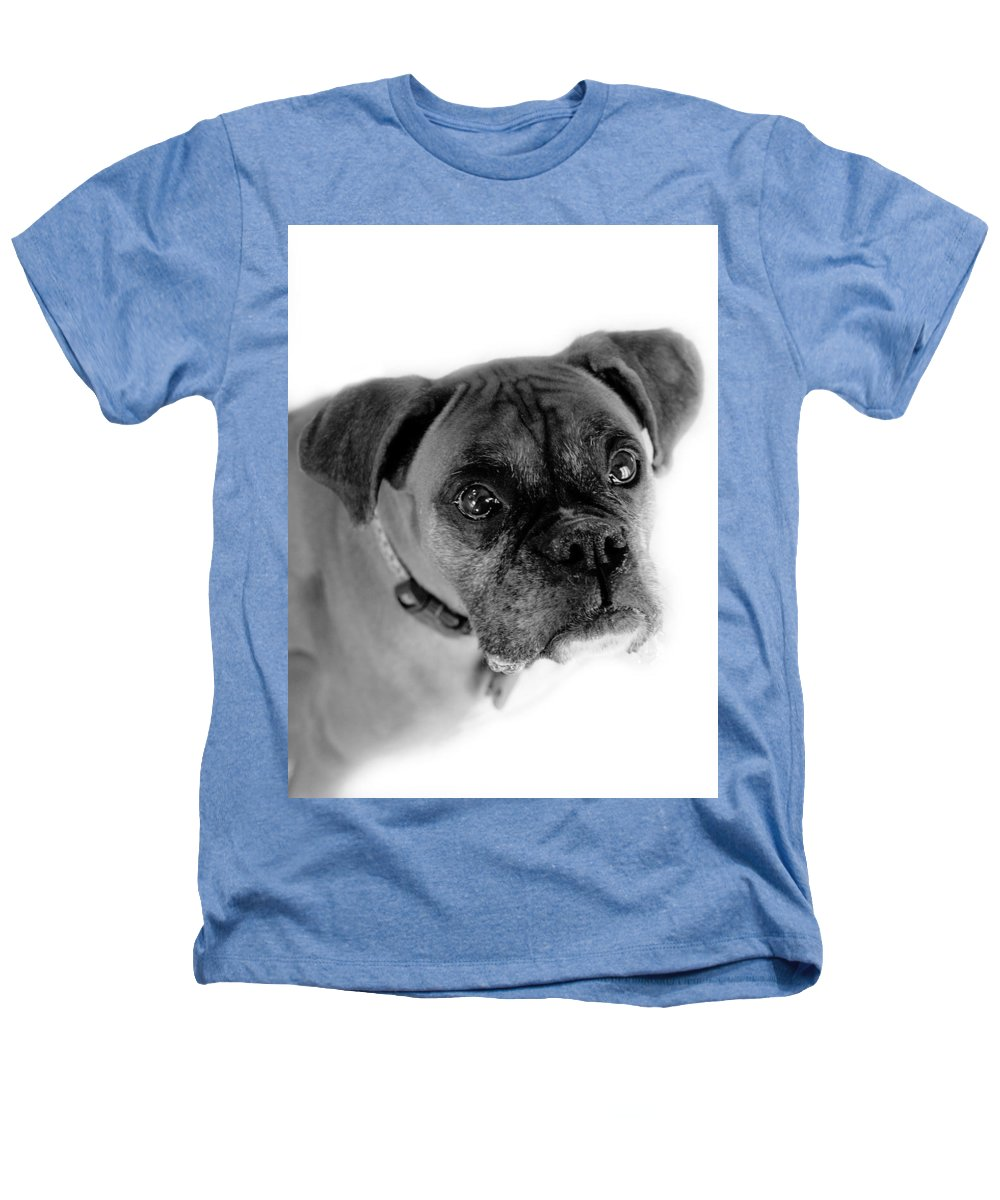 Boxer Heathers T-Shirt featuring the photograph Boxer Dog by Marilyn Hunt