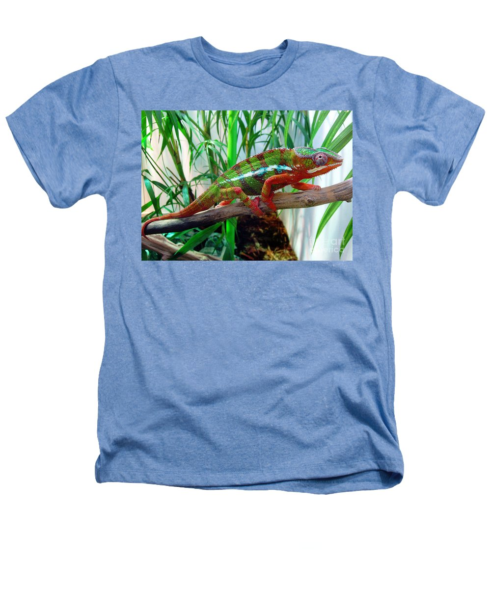Chameleon Heathers T-Shirt featuring the photograph Colorful Chameleon by Nancy Mueller