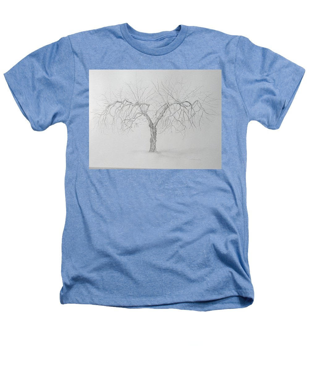 Cortland Apple Tree Heathers T-Shirt featuring the drawing Cortland Apple by Leah Tomaino
