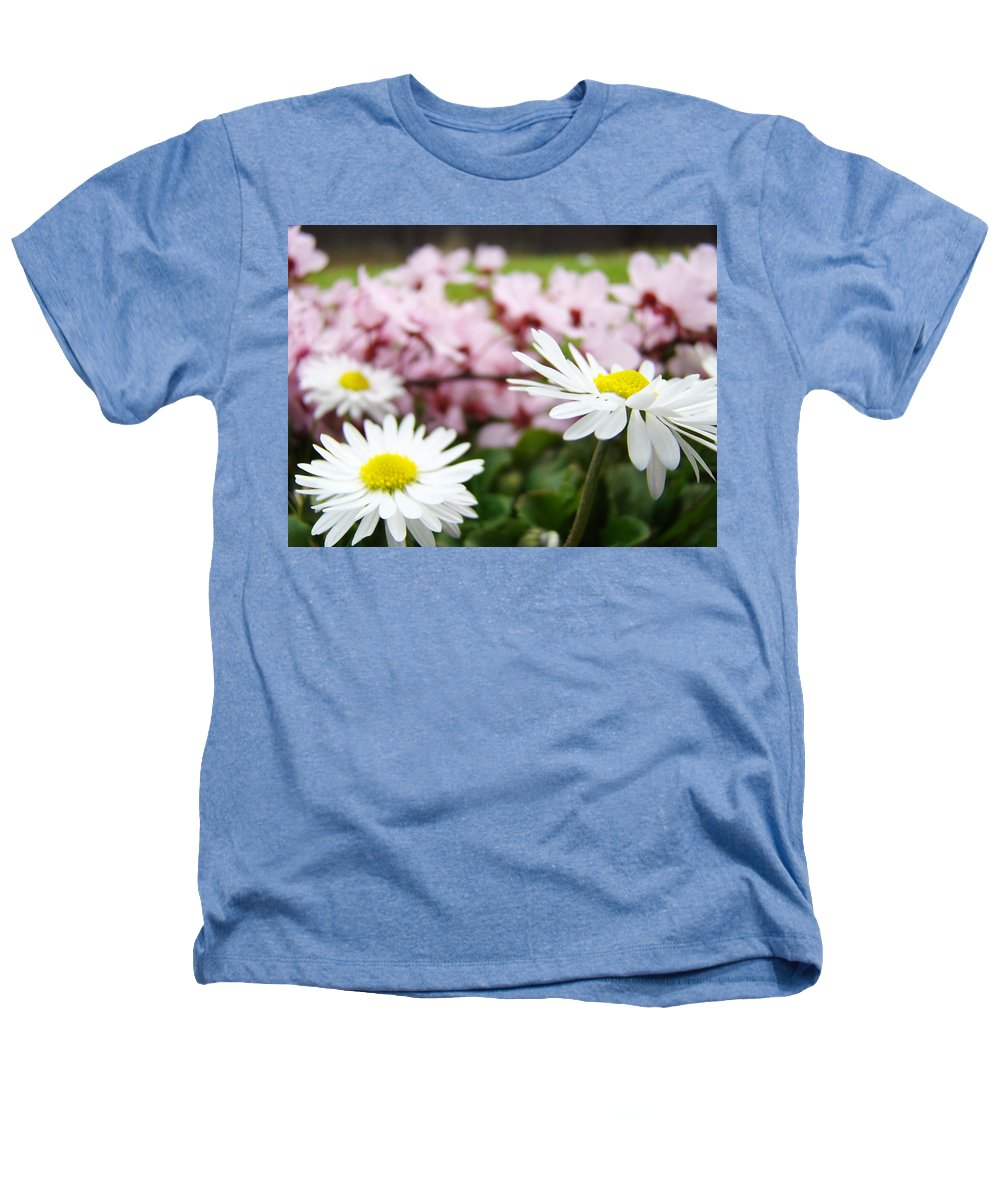 Daisies Heathers T-Shirt featuring the photograph Daisies Flowers Art Prints Spring Flowers Artwork Garden Nature Art by Baslee Troutman
