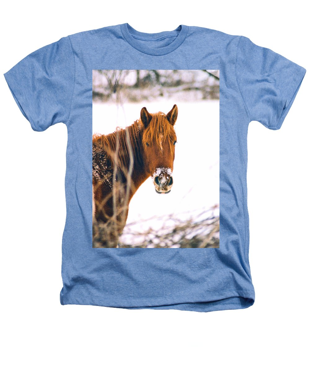 Horse Heathers T-Shirt featuring the photograph Horse In Winter by Steve Karol