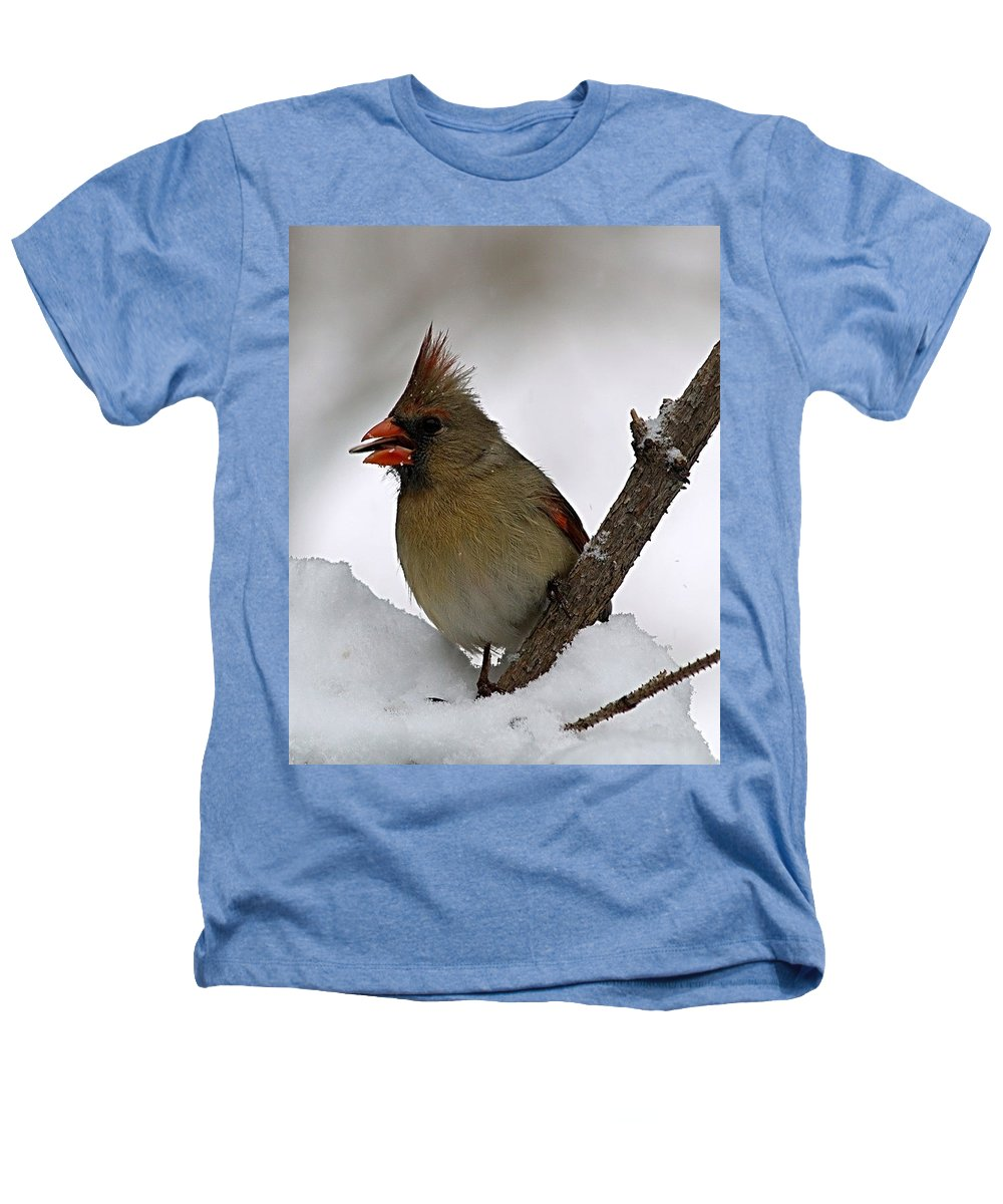 Bird Heathers T-Shirt featuring the photograph I Love Seeds by Gaby Swanson