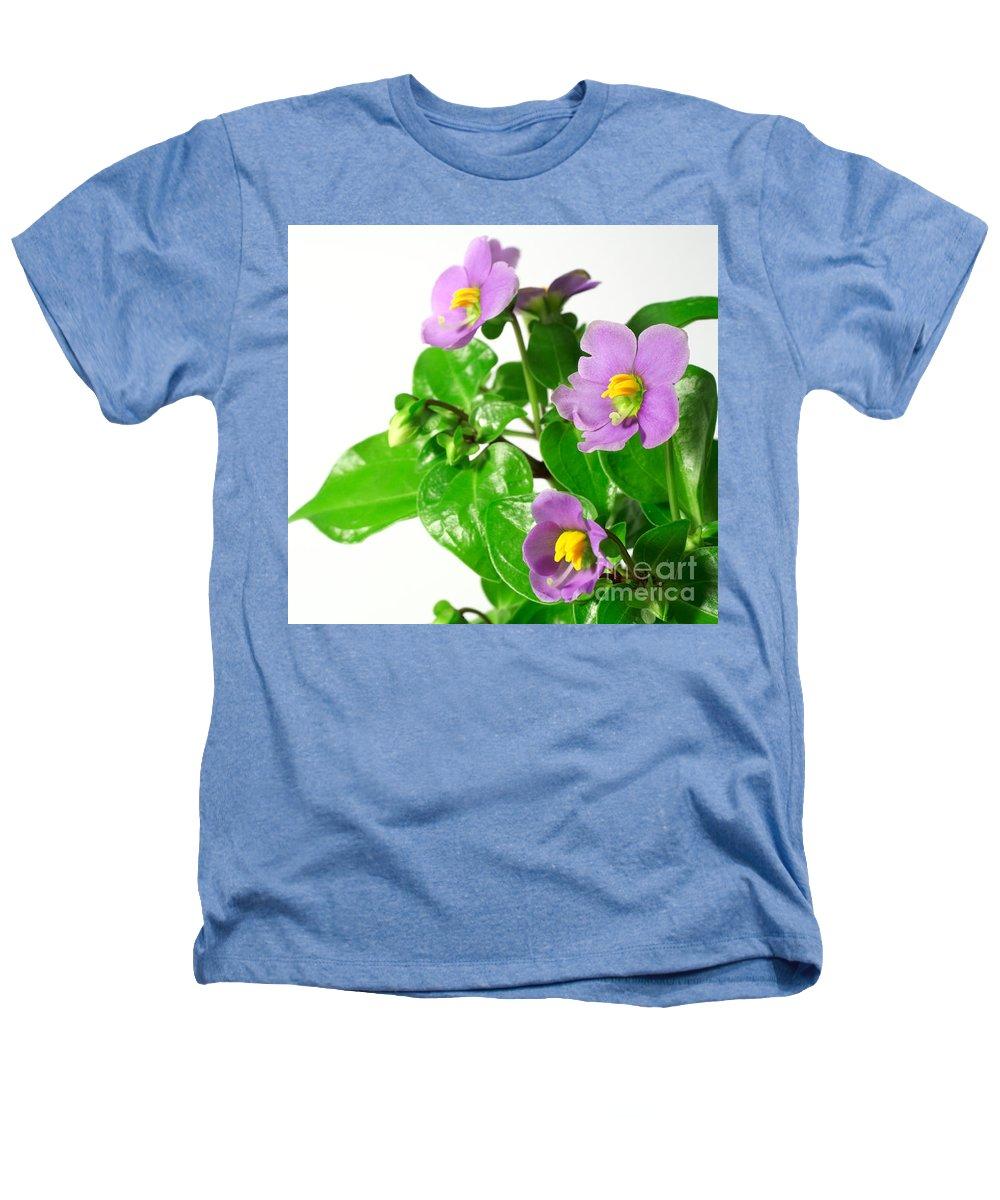 Closeup Heathers T-Shirt featuring the photograph Persian Violets by Gaspar Avila
