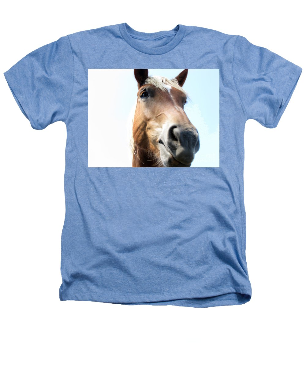 Horse Heathers T-Shirt featuring the photograph Really by Amanda Barcon