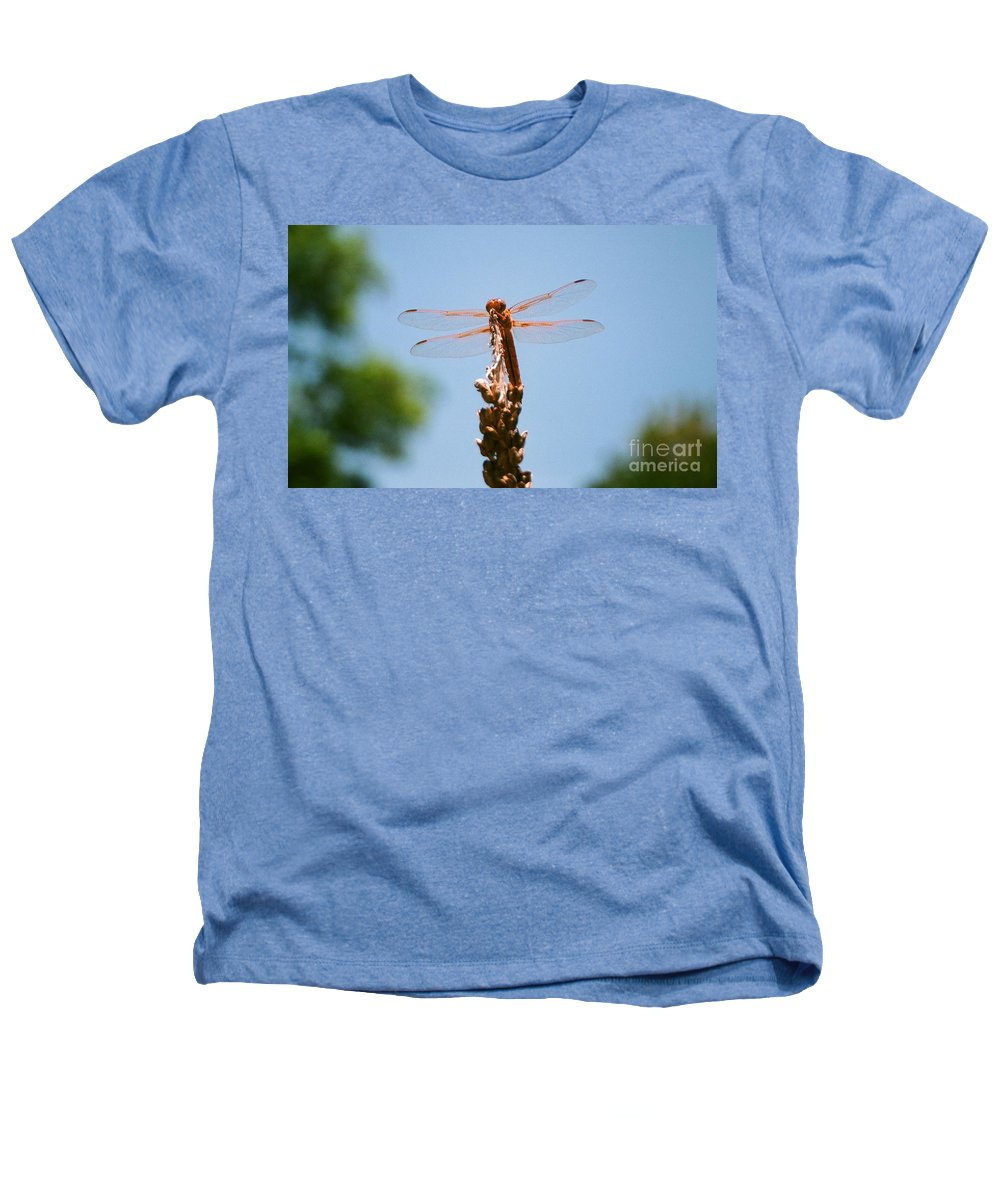 Dragonfly Heathers T-Shirt featuring the photograph Red Dragonfly by Dean Triolo