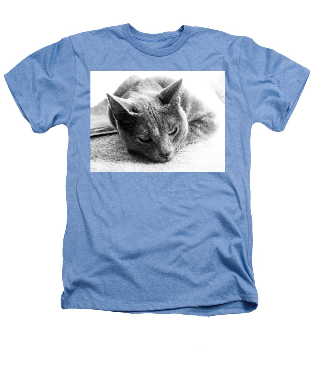 Cats Heathers T-Shirt featuring the photograph Resting by Amanda Barcon