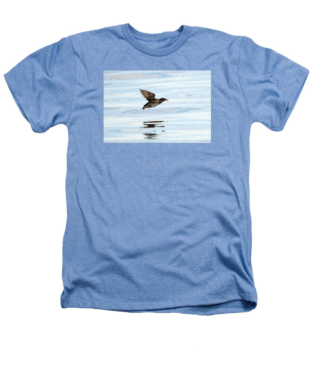 Auklets Heathers T-Shirts
